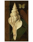 Trinidad 1 Seashell and Butterfly Vintage Style Metal Sign