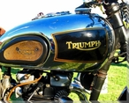 Triumph Motorcycle Gas Tank Wrapped Canvas Giclee Print Wall Art