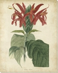 Tropical Floral V Wrapped Canvas Giclee Print Wall Art