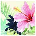 Tropical Punch Absorbent Beverage Coasters, Set of 12