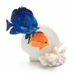 Tropical Sea Fish with a Shell and Coral Statue
