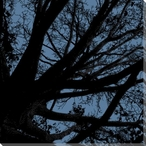 Twilight Trees Blue Right Wrapped Canvas Giclee Print Wall Art
