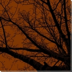 Twilight Trees Rust Left Wrapped Canvas Giclee Print Wall Art