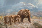 Under the Sleeping Giant Grizzly Bears Canvas Giclee Wall Art