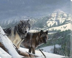 Vantage Point Two Wolves III Wrapped Canvas Giclee Print Wall Art