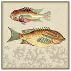 Very Fishy with Coral Sleek Abstract Fish Vintage Style Wooden Sign