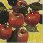 Vibrant Fruit Apples IV Wrapped Canvas Giclee Print Wall Art