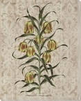 Victorian Flowers II Wrapped Canvas Giclee Print Wall Art