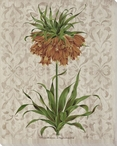 Victorian Flowers III Wrapped Canvas Giclee Print Wall Art