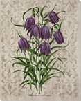 Victorian Flowers IV Wrapped Canvas Giclee Print Wall Art