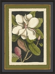 Vintage Flora II Matted and Framed Art Print Wall Art
