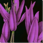 Violet Graphic Lily Flower TR Wrapped Canvas Giclee Print Wall Art