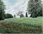 Warwick Shire Meadow Wrapped Canvas Giclee Print Wall Art