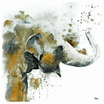 Water Elephant with Gold Absorbent Beverage Coasters, Set of 12