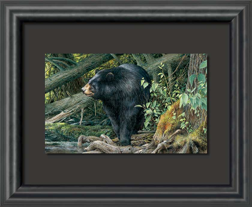 When Spring Calls Black Bear Float Mount Framed Art Print Wall Art ...