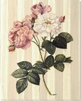 White and Pink Rose Flowers Wrapped Canvas Giclee Print Wall Art