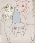White Dog Face Wrapped Canvas Giclee Print Wall Art