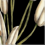 White Graphic Lily Flower MR Wrapped Canvas Giclee Print Wall Art