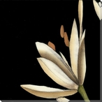White Graphic Lily Flower TL Wrapped Canvas Giclee Print Wall Art