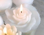 White Rose Candle Floats Floating Candles, Set of 12