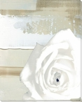 White Rose on Neutral Abstract Wrapped Canvas Giclee Print