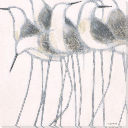 Whitewashed Sandpiper Birds II Wrapped Canvas Giclee Print - Wall ...