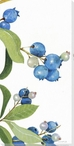 Wild Blueberries IV Wrapped Canvas Giclee Print Wall Art