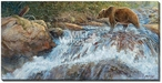 Wilderness Walk Grizzly Bear Wrapped Canvas Giclee Print Wall Art