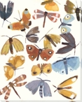 Winged Insects II Wrapped Canvas Giclee Print Wall Art