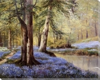 Wood and Bluebells Wrapped Canvas Giclee Print Wall Art