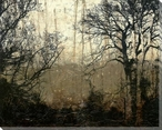 Wooded Solitude II Wrapped Canvas Giclee Print Wall Art
