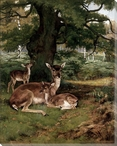 Woodlands Deer 1891 Wrapped Canvas Giclee Print Wall Art