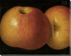 Yellow Apples No. 188 Wrapped Canvas Giclee Print Wall Art