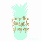 You're the Pineapple of My Eye Absorbent Beverage Coasters, Set of 12
