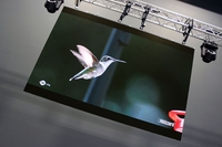 IRiS R3 24-Panel Complete LED Wall Video System