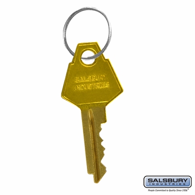 Salsbury 2298 Additional Key Per Lock For Aluminum Mailboxes