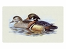 Bacova Gardens 10162 Wood Duck Residential Post Mount Strong Box Mailbox