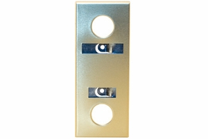 Escutcheon - Anod Gold with Design