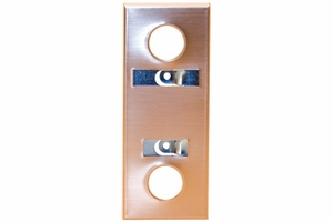 Escutcheon - Bronze with Design