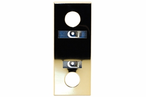 Escutcheon - Mirror Gold