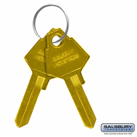 Salsbury 2099 Key Blanks For Standard Locks Of Brass Mailboxes Box Of (50)