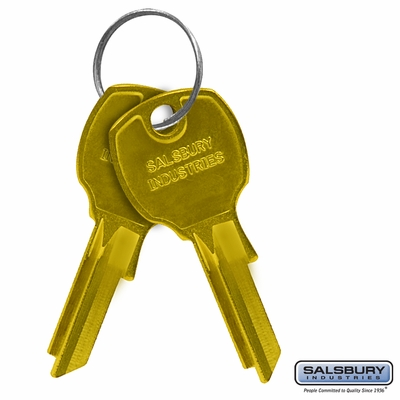 Salsbury 3599 Key Blanks For Standard Locks Of Vertical Mailboxes Box Of (50)