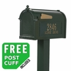 Whitehall Premium Streetside Mailbox Package in Green