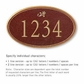 Salsbury 1432MGDS Signature Series Address Plaque