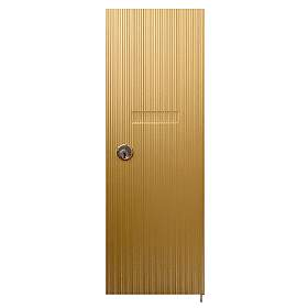 Salsbury 3551BRS Vertical Mailbox Door Standard Replacement Brass Finish