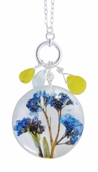 Forget Me Not On Shell