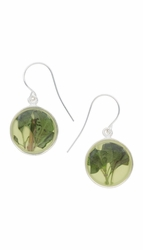 Oregano Yellow Round Earrings