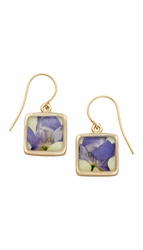 Purple Larkspur Lime Sq Earrings
