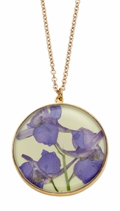 Purple Larkspur on Lime