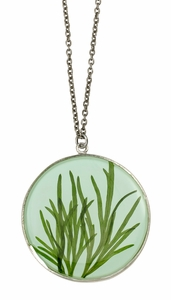 Seagrass on Aqua